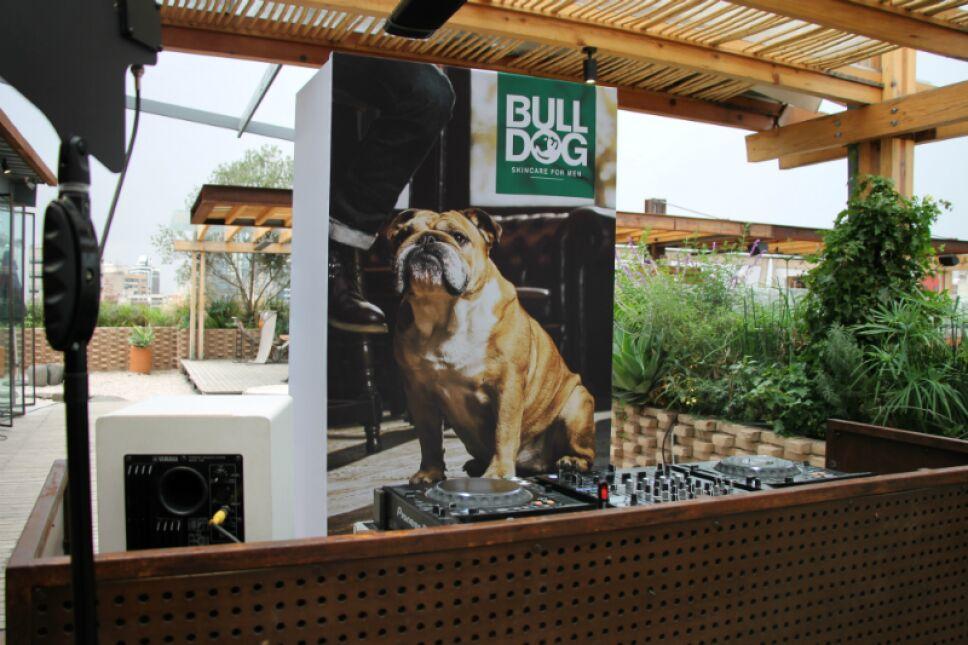 bulldog llega a mex