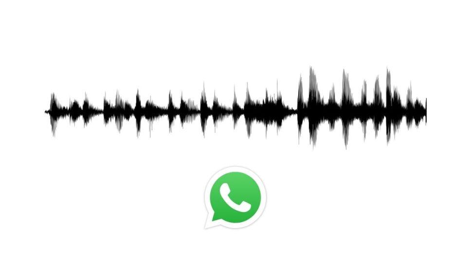 WhatsApp, actualización, función B.jpg