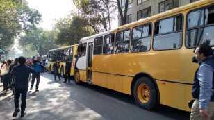 autobuses.jpeg