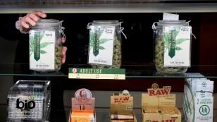 FOTO DE ARCHIVO:  Un empleado mantiene un frasco de marihuana en una venta de Greenstone Provisions en Ann Arbor